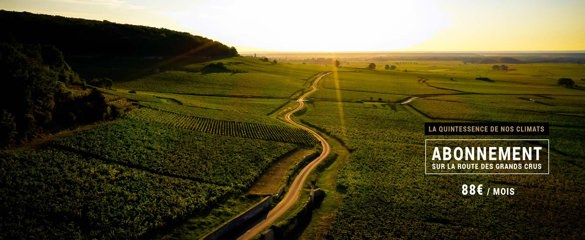 Box vin - Sur la Route des Grands crus