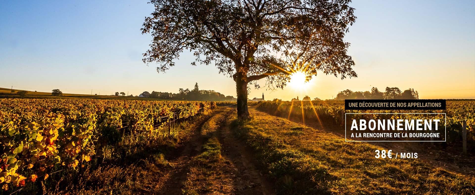 Box vin - A la rencontre de la bourgogne